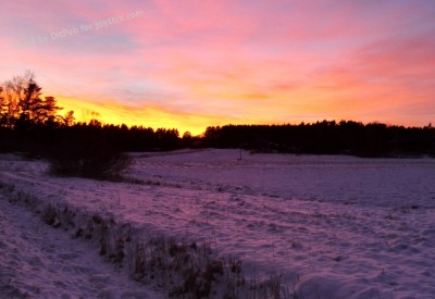 Cs15.dataditpubpublished20160225joythis.com_A_pic_my_sister_snapped_while_taking_her_dog_out_in_Finland_5152x2896_OC_i.imgur_.com_4dT4o0c_1024x768_stamped.jpg